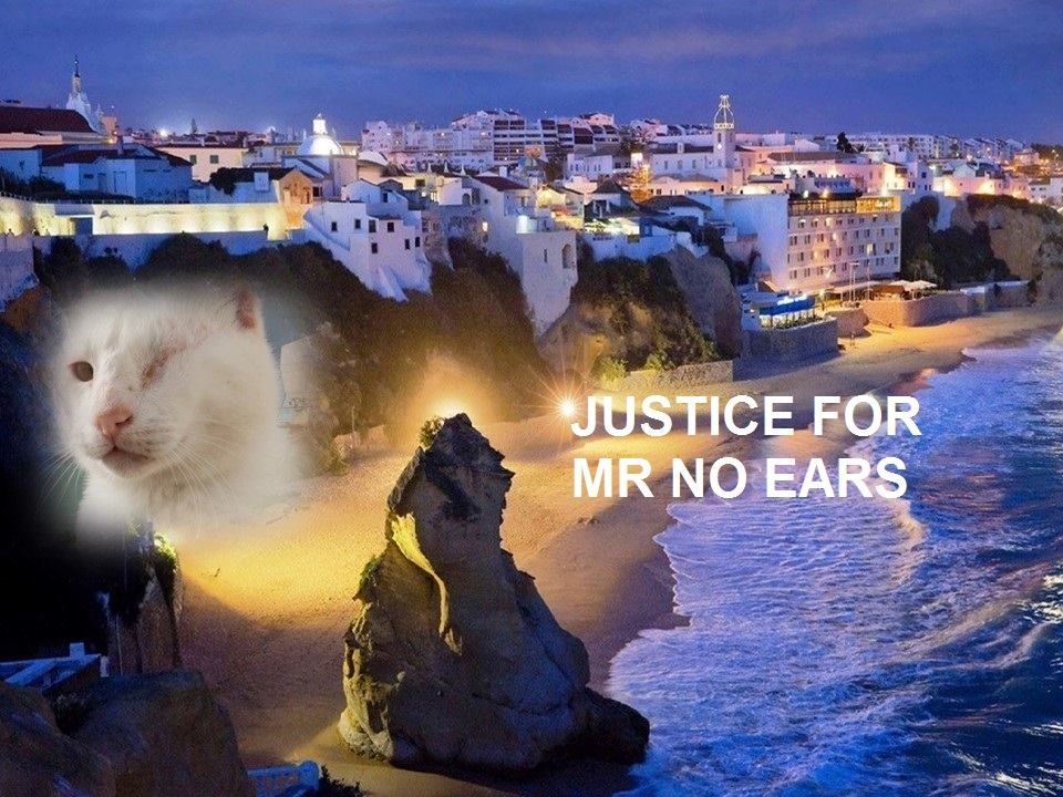 Justice for Mr No Ears