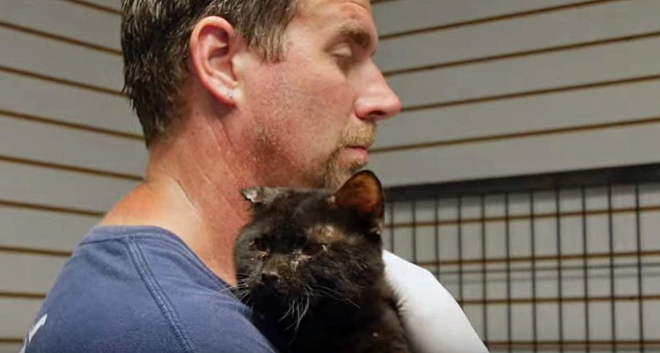 Orren rescued