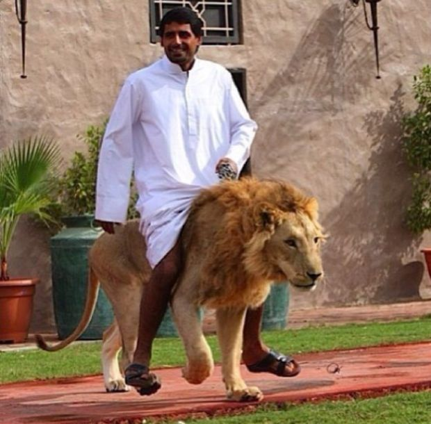 Riding a lion in Dubai