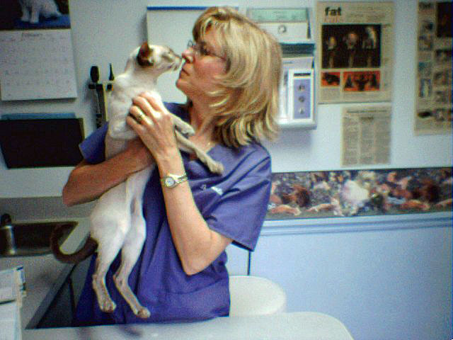 Dr. Sandy at work with Hush Puppy. Photo: Jo Singer.