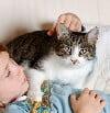 Cat and child