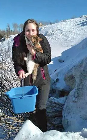 Cat rescued after being frozen into ice