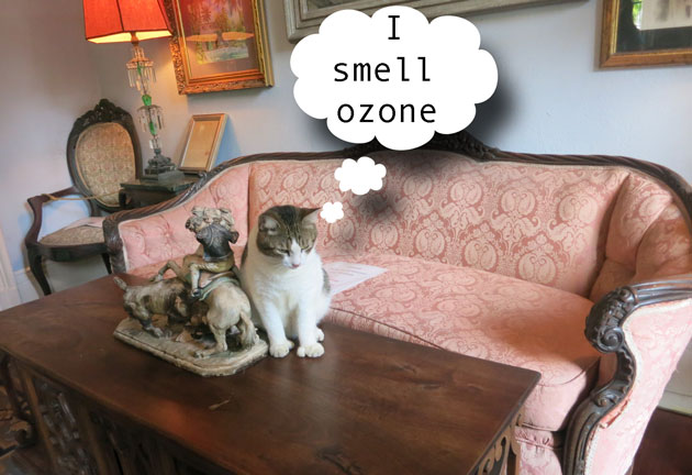 Are ionizers safe for pets