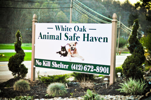 White Oak Animal Shelter