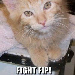 Mr. Swanson succumbed to FIP at 17 months