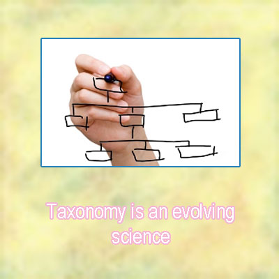 Taxonomy in a sentence
