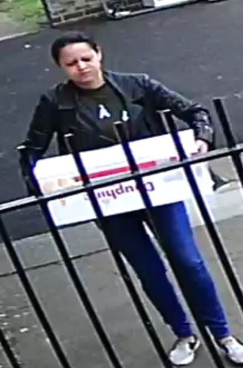 Woman abandoning kittens allegedly