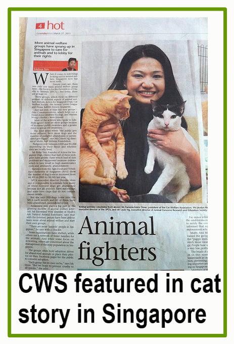 Cat Welfare Mediators