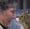 Why do cats touch your face with their nose?