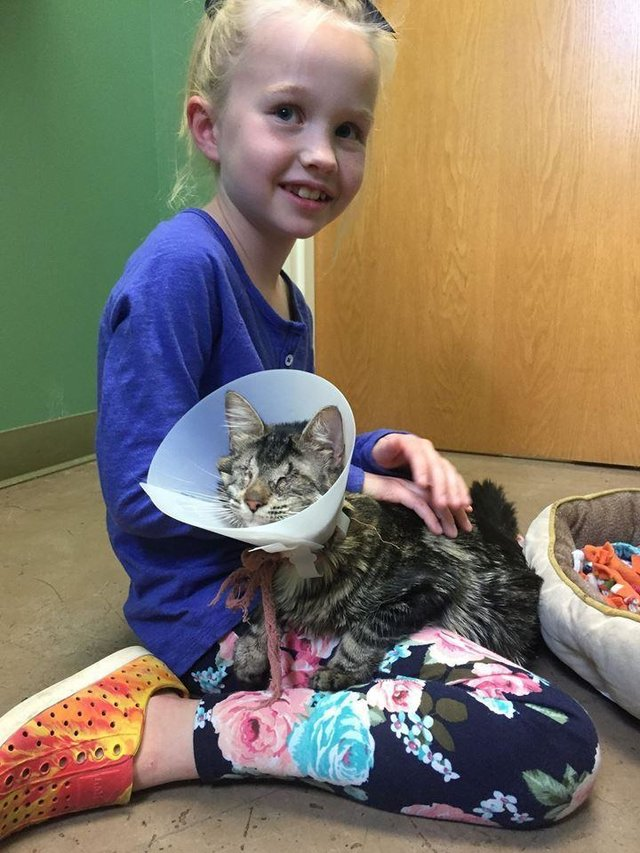 Eight-year-old girl loves blind rescue cat