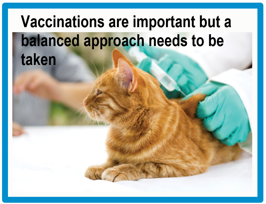 Decline in pet vaccinations in the UK