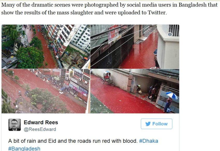 EID Bangladesh - rivers of blood on the street