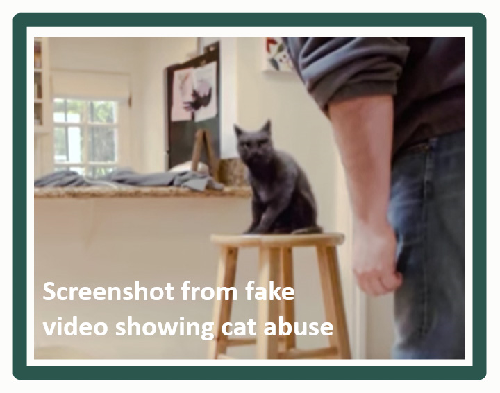 PETA wanted a fake cat abuse video to go viral to get their message across