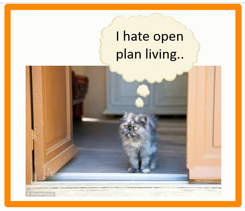 Is open plan living bad for cats?