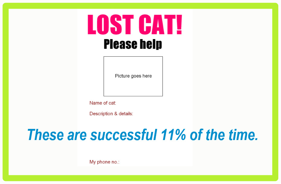 Lost my cat - how to find it?