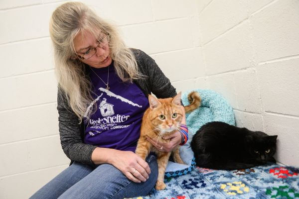 Animal shelter wants to sue a couple for $1000 for breach of contract