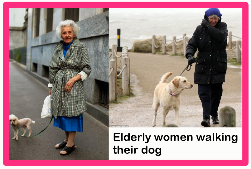 Are dog campanions better for old people than cats