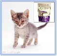 Is L-lysine good for herpes virus in cats?