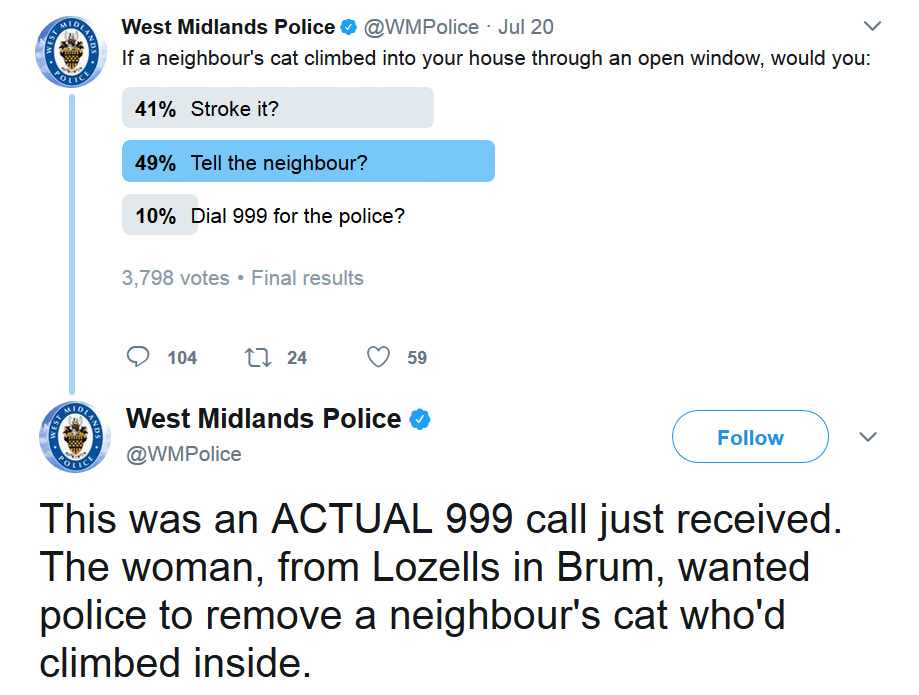Woman calls police after cat gets into her home