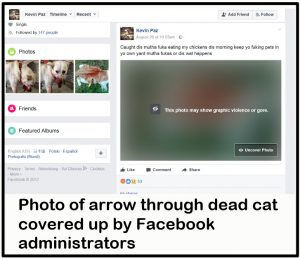 Teenager's fake Facebook account glorifying and revelling in the animal cruelty of others?