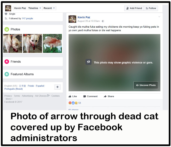 """Fake Facebook page of """"Kevin Paz"""" showing covered photo of dead cat"""