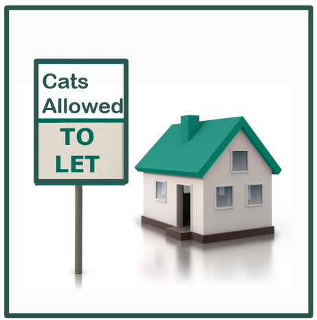 Landlords should allow cats for commercial reasons