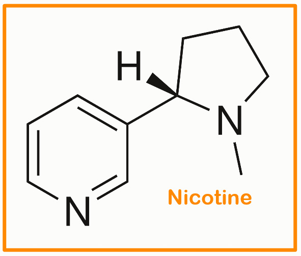 Nicotine is toxic to cats