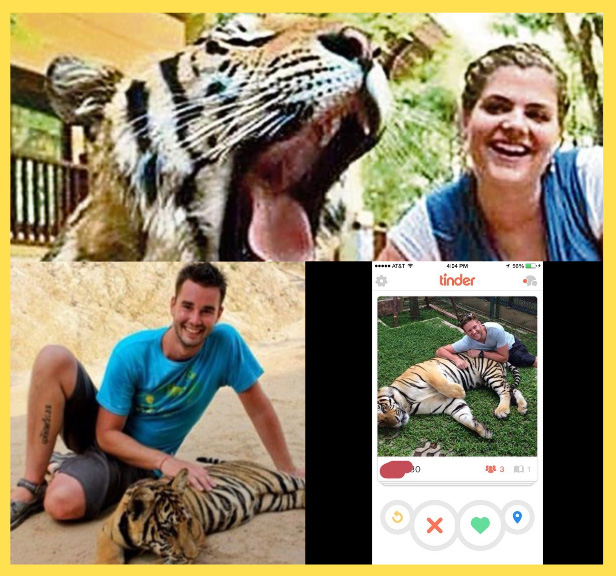 Tinder tiger selfies are bad for wildlife conservation