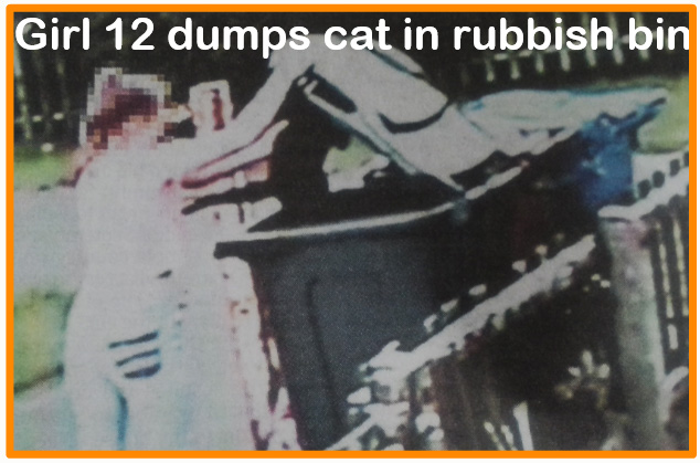 How could a 12-year-old girl dump a cat in a rubbish bin?