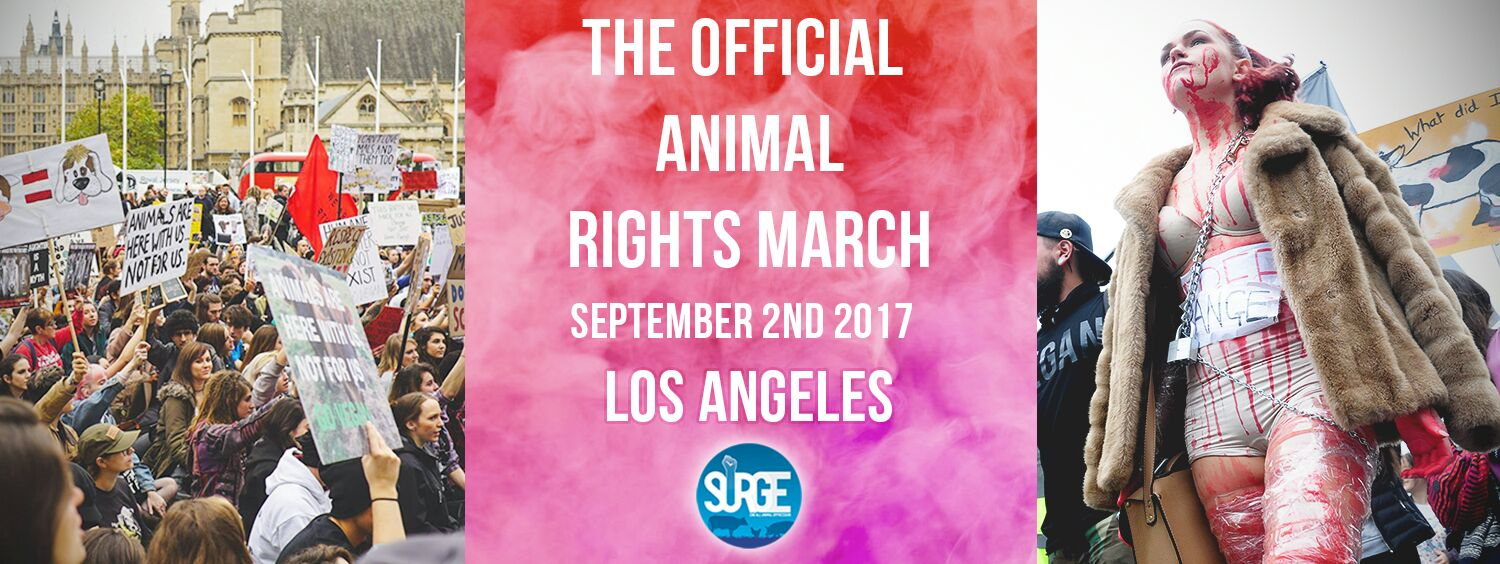 Los Angeles animal rights March 2nd Sept 2017