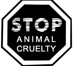 Stop animal cruelty - abusers get away with it