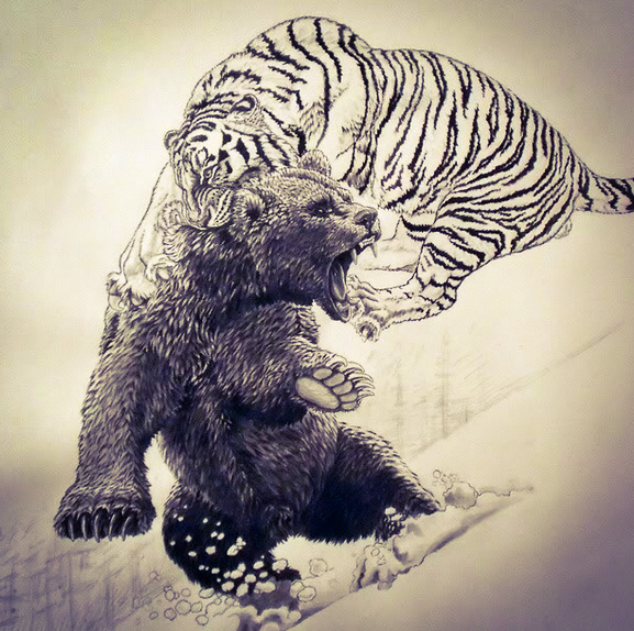 Tiger attacks bear