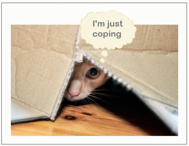Cat coping skills