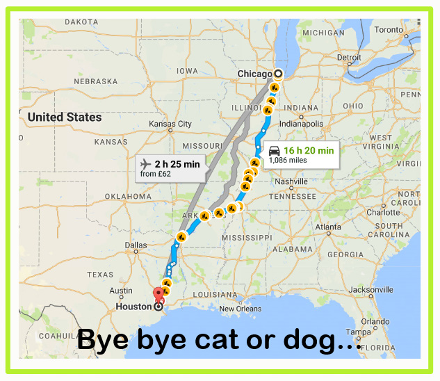 I do not know for sure but I wonder whether there is a better way of dealing with cats and dogs which have been separated from their owners due to the Houston floods caused by hurricane Harvey? Hundreds are being shipped out of Houston to Chicago and San Francisco where they will be readopted by new owners and living new homes. Could not the animals be kept down in the south, in Texas not far from Houston and their owners temporarily rehomed pending the repair of their own homes and then they could be reunited with their animals?