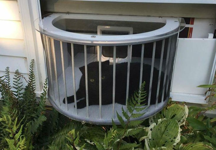 Tailormade cat window box