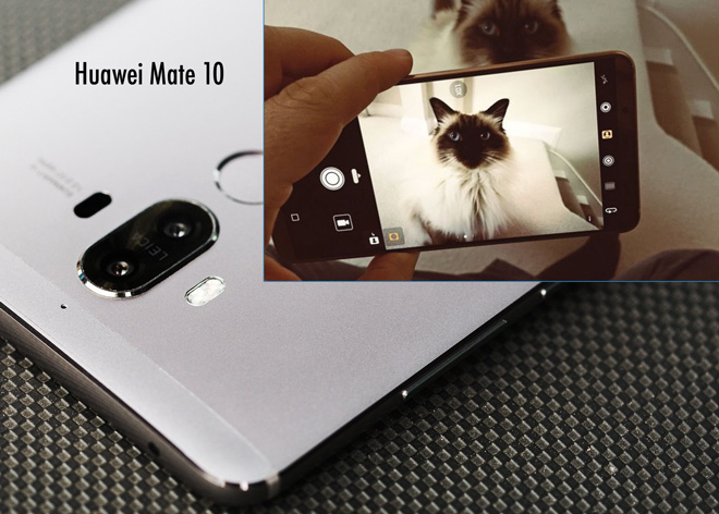Huawei Mate 10 can distinguish between cats and dogs!