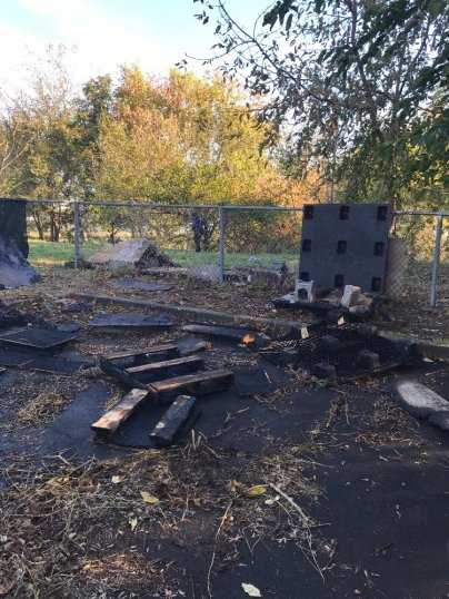 Good Conquers Evil: $22k raised in 3 days to rebuild cat shelter burnt down by arsonists