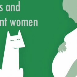 Cats and pregnant women