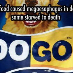 DoGo dog food