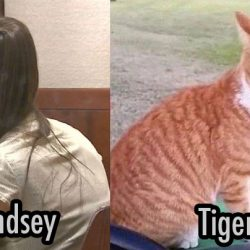 Kristen Lindsey and Tiger the cat she killed