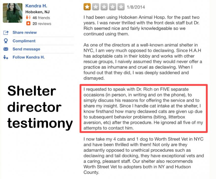 Shelter director testimony on declawed cat relinquishments