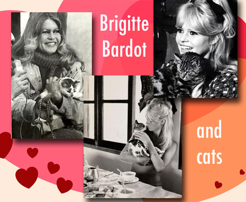 Brigitte Bardot and cats