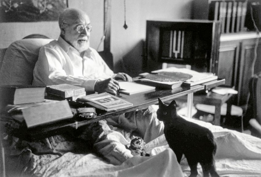 Matisse and cats