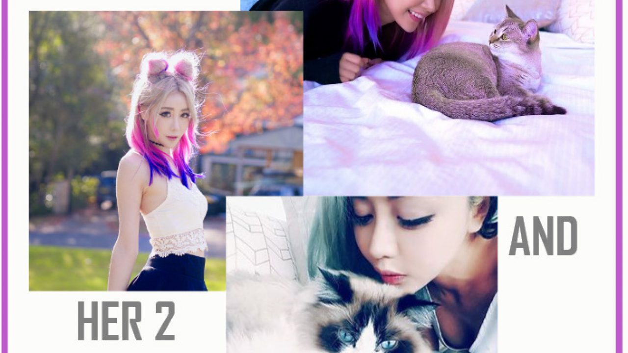 How Many Cats Does Wengie Have Poc