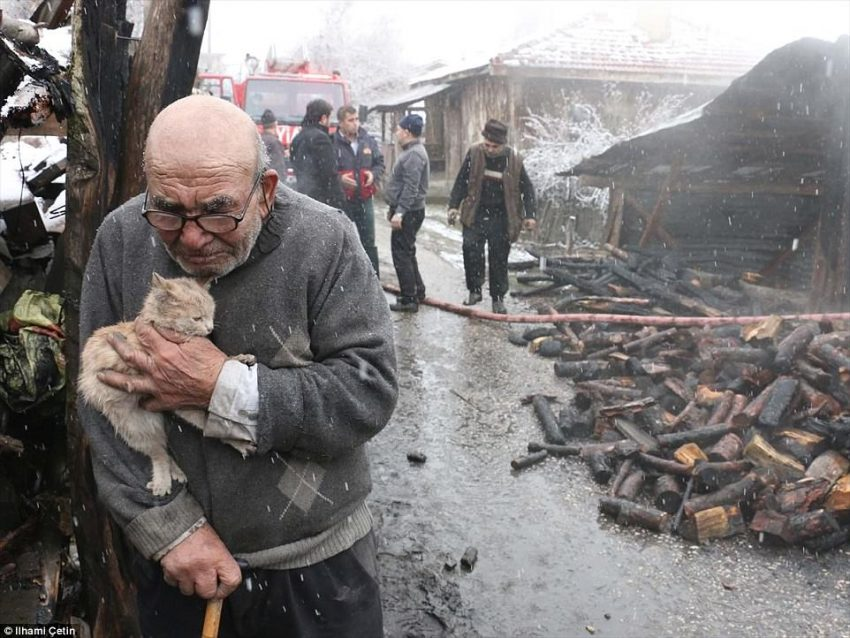 Wonderful but Tragic Photograph of Old Man and His Rescued Cat