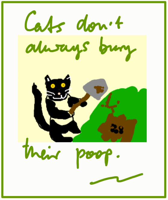 Do All Cats Bury Their Poop?
