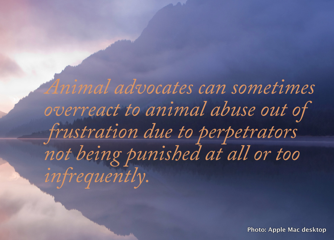 Why animal advocates can overreact to animal abuse