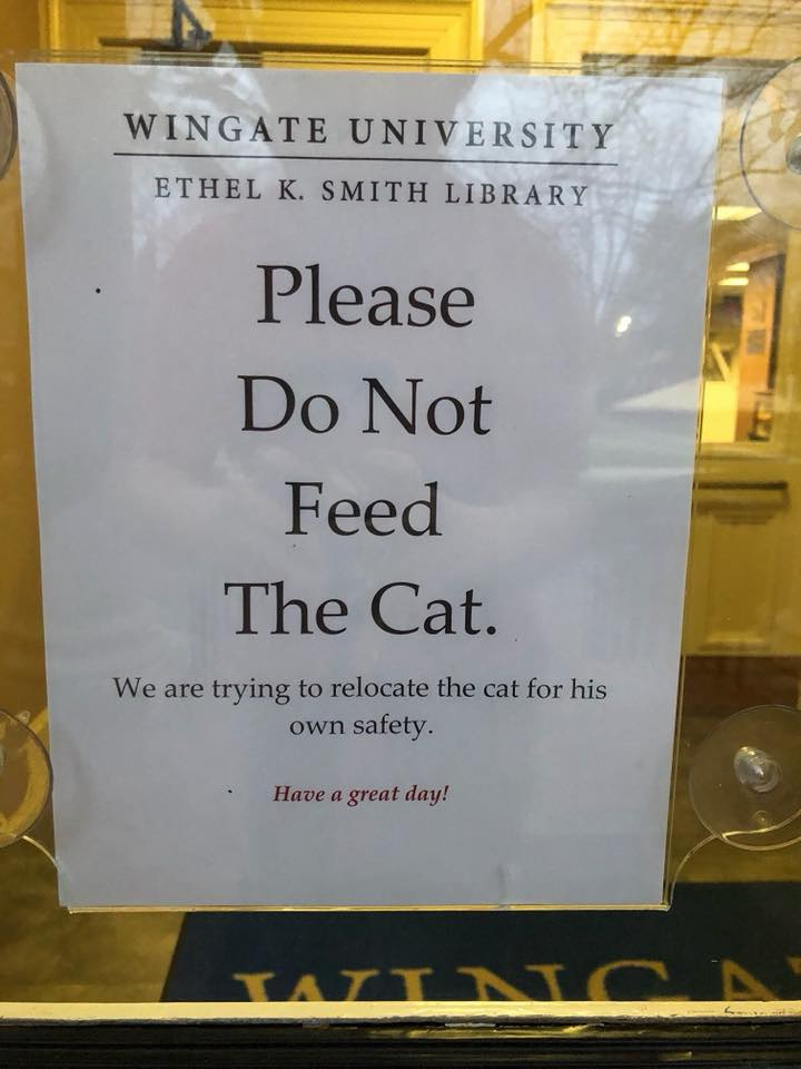 Campus Kitty Banned