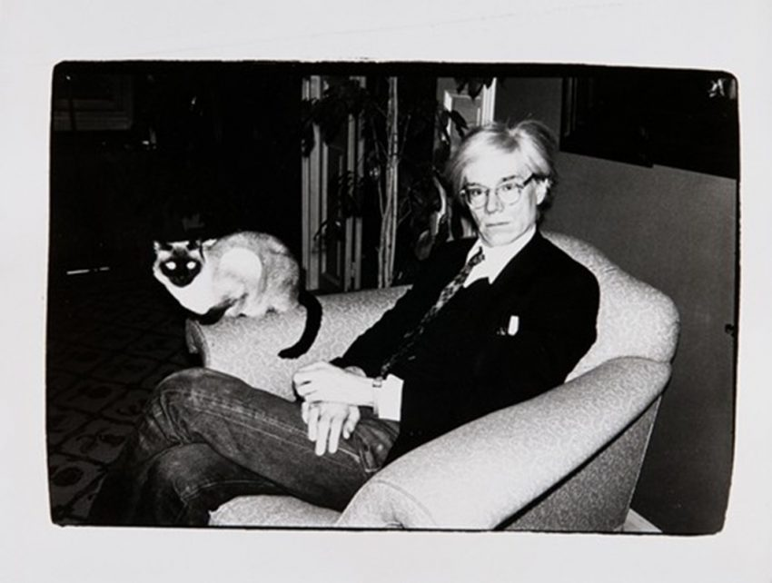 Did Andy Warhol have any pets?