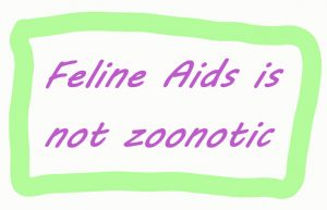 Feline Aids is not zoonotic